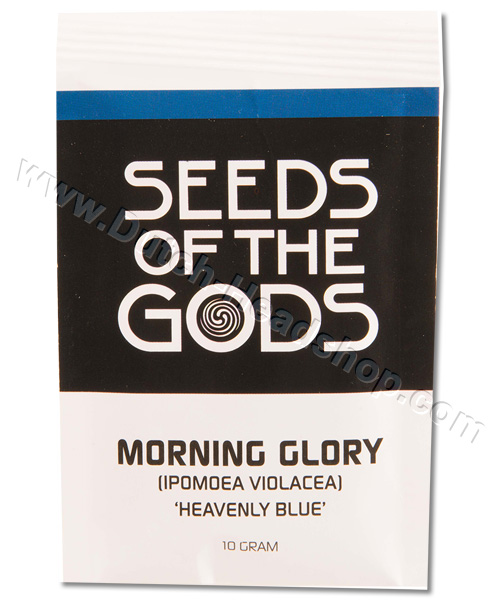 Morning Glory Seeds morning glory seeds (10 grams) - heavenly blue ...