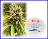 Blueberry autoflower feminized (5 seeds) Private Label