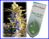 Easy Ryder autoflower feminized (3 seeds) Joint Doctors
