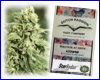 StarRyder autoflower feminized (3 seeds) Dutch Passion