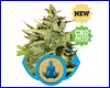 Stress Killer Automatic feminized (5 seeds) royal queen