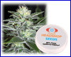 White Widow autoflower feminized (5 seeds) Private Label