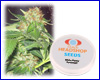 White Widow feminized (5 seeds) Private Label